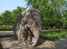 A Ming-dinasztia császárainak sírhelyéhez vezető utat kőelefántok őrzik.