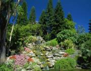 Van-e védelme kertednek hátul domb vagy ház formájában – Fekete Teknős -, ha nincs, akkor fontos kialakítanod, akár kerítés, kis domb kialakításával, vagy fák, bokrok ültetésével.