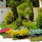 A növények méretének, magasságának a megválasztásával is hatással lehetsz a Jin-Jang arányára a kertedben.