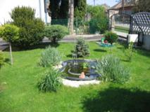 Ha kertedben medencét szeretnél kialakítani, feltétlenül konzultálj klasszikus feng shui tanácsadóval!