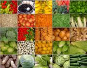 Zöldségek: Milyen a Föld és a Fém kapcsolata?