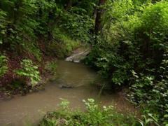 Van-e természetes víz a telken (patak, tó) vagy a környéken?