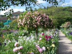 A Zöld környékre virágokkal gazdagon övezett út vezet.